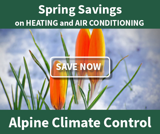 Alpine Spring Savings Button Click for Details